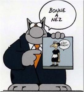 chat-bonne-annee