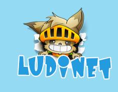 ludinet logo